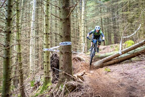 Photo of Sam GREENLAND at Kirroughtree Forest