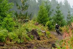 Photo of Canyon WILCOX at Battle Ground, WA