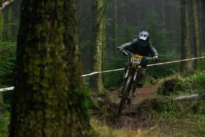 Photo of Jack TAYLOR (juv) at Hopton