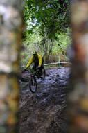 Photo of Robert NICKELS at Grogley Woods
