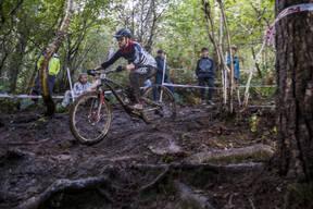 Photo of Dan TORR at Grogley Woods