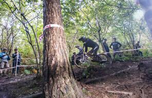 Photo of Antonio FIORE at Grogley Woods