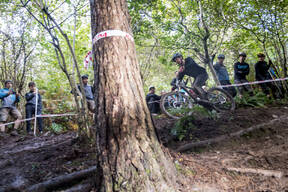 Photo of Will SPEARS at Grogley Woods