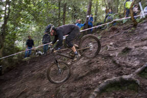 Photo of Lewis WILTON at Grogley Woods